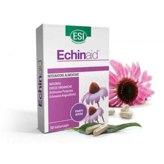 Echinaid , Echinacea  kasvirág koncentrátum (30 db)